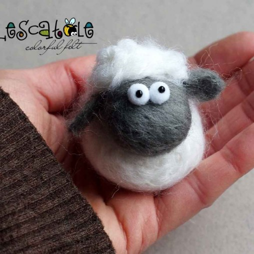 Lovely wool sheep