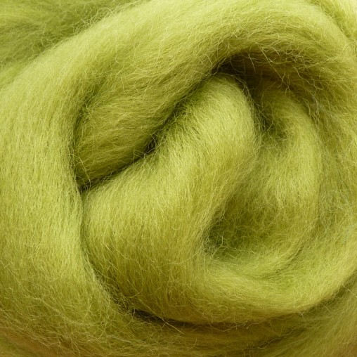 10g WOOL SLIVER - LIGHT GREEN