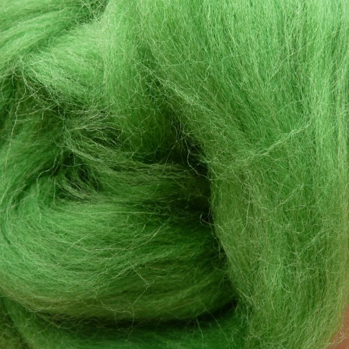 10g WOOL SLIVER - GREEN