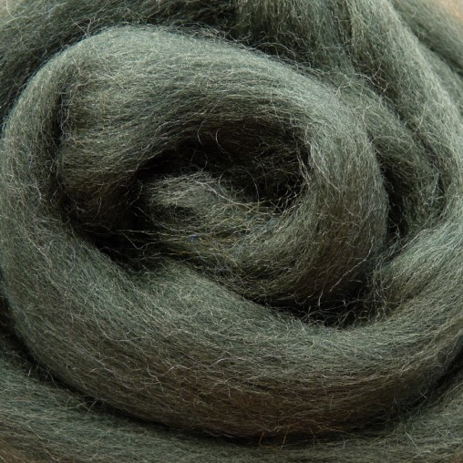10g WOOL SLIVER - DARK GREEN