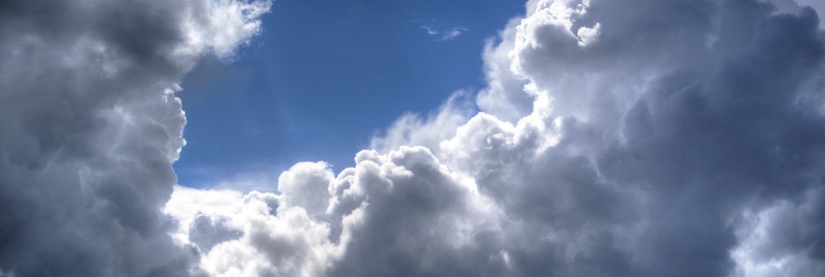 Lebensraum Luft