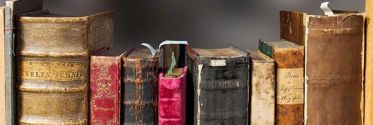 Lebensraum Buch & Hosentaschen