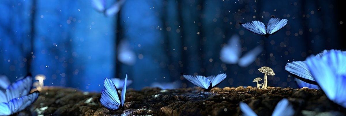 Filztiere  Märchen und Phantasie