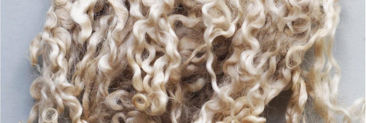 Curls & Co