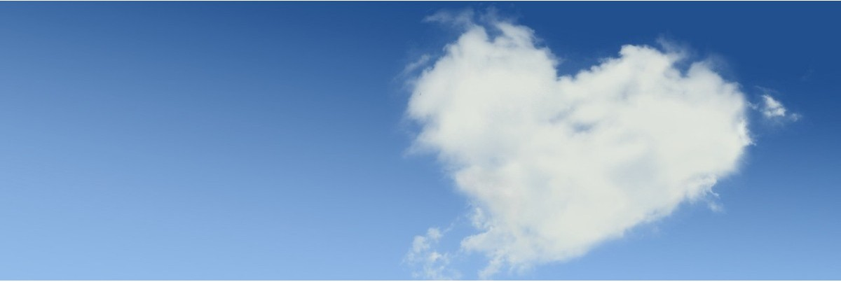 Filztiere - Lebensraum Wolke sieben